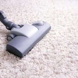 tumbledry Carpet Cleaning